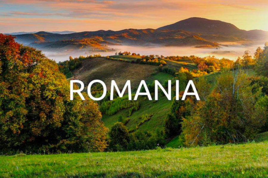 Reforestation with Yogacycled – Romania