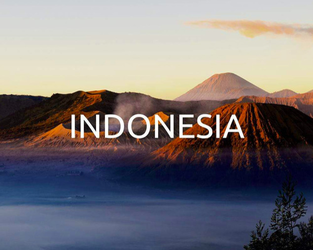 Reforestation with Yogacycled – Indonesia
